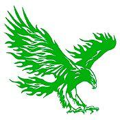 Vinilo Águila flameante Verde 93x90cm