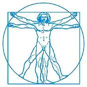 Vinilo Hombre de Vitruvio Azul Claro 60x60cm
