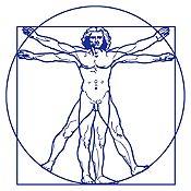 Vinilo Hombre de Vitruvio Azul Medio 100x100cm