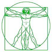 Vinilo Hombre de Vitruvio Verde 100x100cm