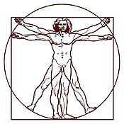 Vinilo Hombre de Vitruvio Marrón 80x80cm