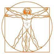 Vinilo Hombre de Vitruvio Naranja