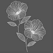 Vinilo Flor de Jamaica Blanco Medida G