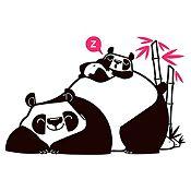 Vinilo Pandas Durmiendo Negro, Fucsia Medida G