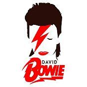 Vinilo David Bowie Negro, Rojo Medida M