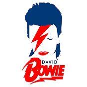 Vinilo David Bowie Azul Oscuro, Rojo Medida M