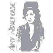 Vinilo Amy Winehouse Plata Medida P