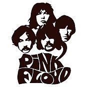 Vinilo Pink Floyd Negro Medida P