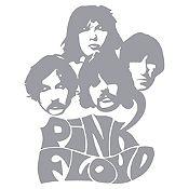 Vinilo Pink Floyd Plata Medida P