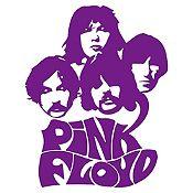 Vinilo Pink Floyd Morado Medida M