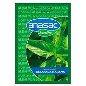 Hierba aromática albahaca Italiana hoja grande