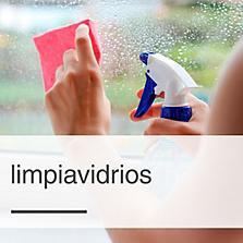 Limpia Vidrios/Multiusos