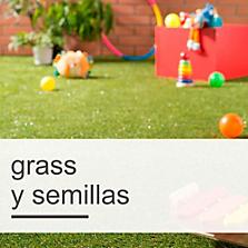 Grass y Semillas