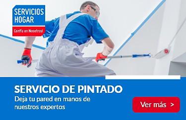 Servicio de pintado
