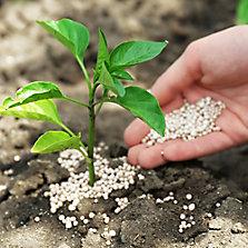 Fertilizantes orgánicos