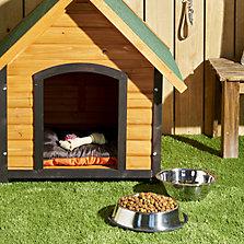 Alimentos y snack para perros